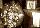 2006: Geslaagde postume hulde Sylvain Tack