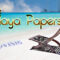De Playa Papers - 7 (video & Baffle 14)