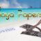 De Playa Papers - 12 (audio & video)