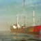 Terug naar de Noordzee (Top 50)