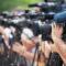 VUB hield zelfpromotie mediagroepen tegen het licht